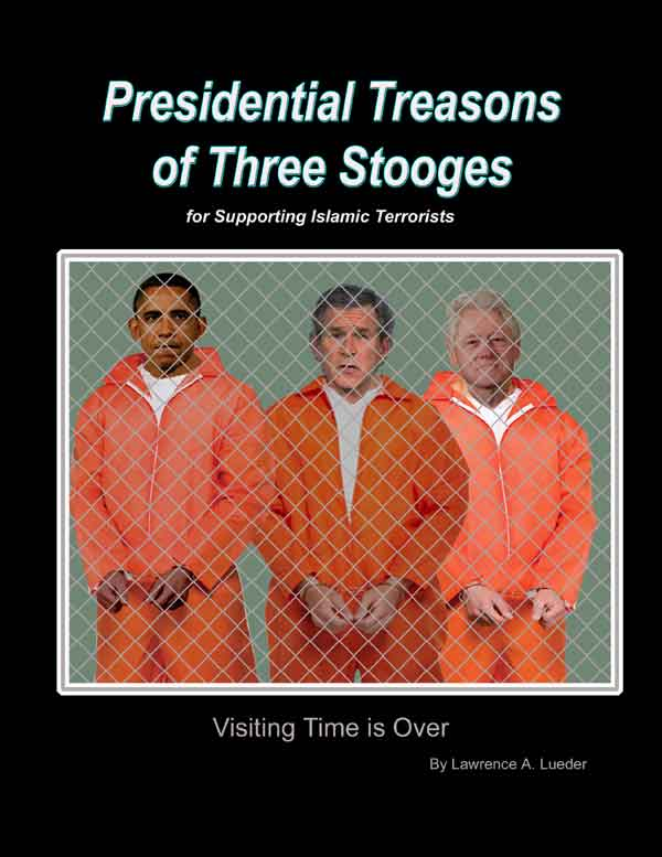 Presidential Treason Book